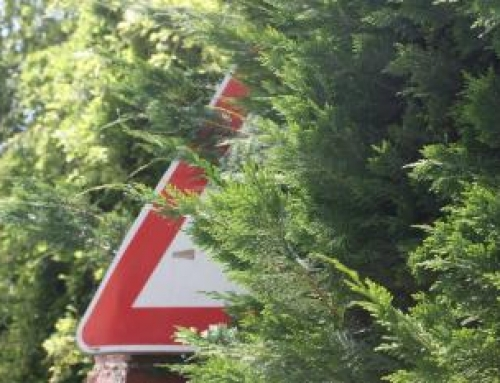 Nullità della multa quando il cartello stradale non è ben visibile.